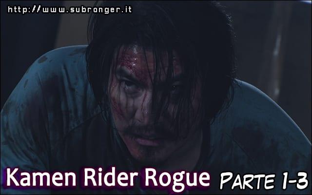 rogue13
